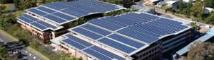Trina Solar Honey modules