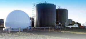 On-site biogas power gets ORC boost