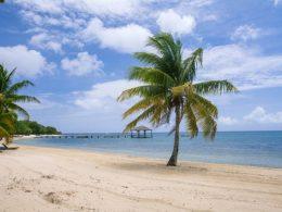 Caribbean solar projects