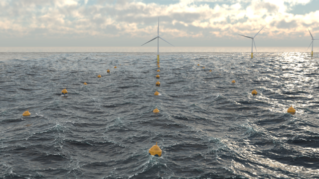 WaveBoost project unlocks tidal energy insights