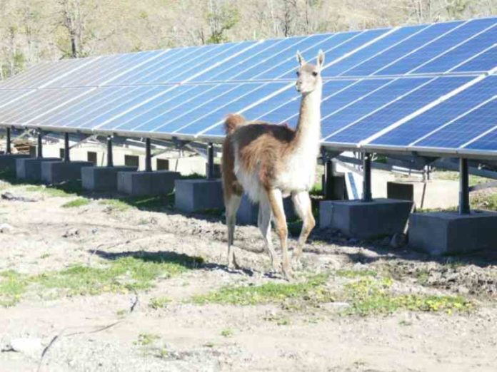 Patagonia National Park solar installation