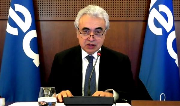 'Renewables immune to Covid' says IEA chief Birol
